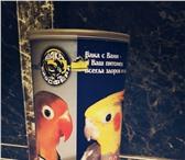Изображение в Домашние животные Товары для животных Большая клетка с откидным верхом,игрушки в Туле 2500