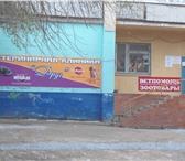 Изображение в Домашние животные Услуги для животных Вакцинация, лечение, кастрация, стерилизация, в Москве 150