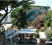 Изображение в Отдых и путешествия Пансионаты Предлагаем недорогой летний отдых на берегу в Смоленске 370