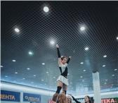 Изображение в Спорт Спортивные школы и секции Оренбургская федерация черлидинга объявляет в Оренбурге 500