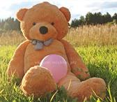 Foto в Для детей Детские игрушки Плюшевый медведь - 2 метра в Петрозаводске 3999