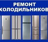 Foto в Электроника и техника Холодильники Ремонт холодильников всех производителей в Сыктывкаре 250