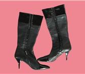 Изображение в Одежда и обувь Женская обувь Сапоги женские, черные, почти новые итальянской в Москве 9000