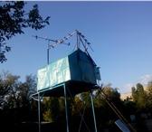 Foto в Домашние животные Птички Продам голубей черномурых и других в Саратове 500