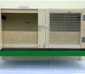 Изображение в Домашние животные Товары для животных Брудер для цыплят. Три брудера можно поставить в Саратове 2600