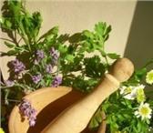Foto в Красота и здоровье Товары для здоровья Предлагаем Вам натуральное средство для похудения. в Рязани 299
