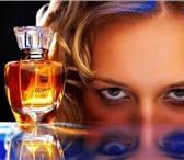 Изображение в Красота и здоровье Парфюмерия 100 ароматов по доступной цене. Компания в Чите 700