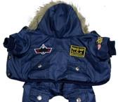 Изображение в Домашние животные Товары для животных продаю новую зимнюю куртку для собаки, которую в Ижевске 1000