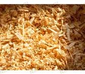 Изображение в Домашние животные Товары для животных подстилка животным,птице,грызунам чистая в Саратове 150