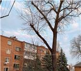 Foto в Недвижимость Квартиры Продаётся 1-ком квартира на втором этаже в Ростове-на-Дону 1750000