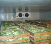 Фотография в Электроника и техника Холодильники Морозильные и холодильные камеры.Осуществляем в Нальчике 0
