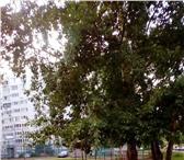 Фотография в Недвижимость Иногородний обмен Обменяю или продам квартиру в нижнем новгороде в Нижнем Новгороде 2600000