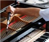 Фотография в Хобби и увлечения Музыка, пение Настройка, регулировка, ремонт фортепиано. в Москве 2500