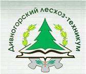 Фото в Образование Училища, техникумы Дивногорский лесхоз-техникум основан в 1975 в Красноярске 0