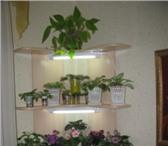 Foto в Мебель и интерьер Мебель для дачи и сада Продам угловую полочку для цветов с подсветкой в Новосибирске 3200