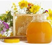 Изображение в Хобби и увлечения Разное Продается наивкуснейший мед 2013 года. Разлиты в Уфе 900