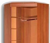 Изображение в Мебель и интерьер Разное Изготовим  корпусную  мебель:  шкафы-купе, в Кстово 0