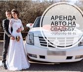 Foto в Авторынок Аренда и прокат авто Предлагаем аренду автомобилей с водителемВсе в Москве 1300