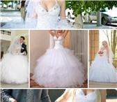 Фотография в Одежда и обувь Свадебные платья Продам новое свадебное платье + чехол и кринолин в Санкт-Петербурге 16000