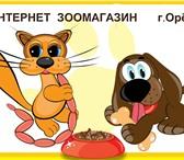Изображение в Домашние животные Корм для животных Профессиональные корма для домашних животных, в Орле 100