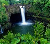 Фотография в Отдых и путешествия Туры, путевки Турагенство на Гавайях - Индивидуальные туры в Владивостоке 15000