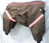 Фото в Домашние животные Одежда для собак Пошив одежды для собак любой сложности. в Ставрополе 300