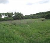 Фотография в Недвижимость Коммерческая недвижимость Продаю участок в селе Маковцы Дзержинского в Калуге 300000