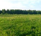Foto в Недвижимость Коттеджные поселки Продаю участок 12 соток от собственника в Санкт-Петербурге 990000