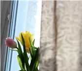 Foto в Домашние животные Растения Каждое 8 марта перед мужчинами встает сложный в Новосибирске 18