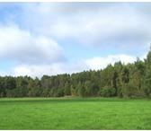 Изображение в Недвижимость Коттеджные поселки Продам земельный участок в Подмосковье в в Москве 480000