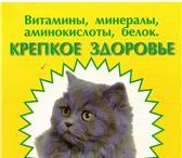 Фото в Домашние животные Корм для животных Добрый день.Наша компания предлагает новинкуМикроводоросль, в Туле 1